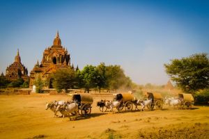 26-01-2013.Foto Renato Weil.Myanmar, bagan