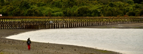 Renato Weil/A Casa Nômade- 2017.Ilha de Chiloé.Quemchi.CL.Iha das almas navegantes