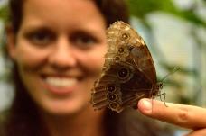 Foto Renato Weil/A Casa Nomade-2018.La Fortuna.Costa Rica.Vulção Arenal.Vila El Castillo. Butterfly Conservatory.Borboletas