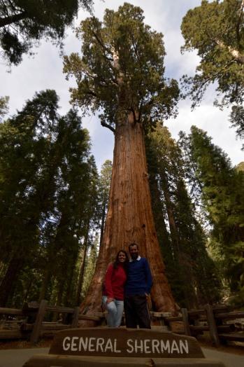 Foto Renato Weil/A Casa Nomade.2018.California .Estados Unidos.Parque Nacional Sequoia